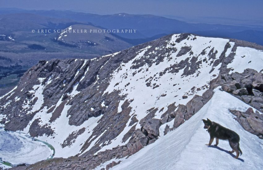 Sasha on Cornice- HI-RES- Mt. Holy Cross